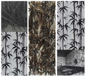 "Bambusa Arundinacea / Le Bijou-Jardin. Serie ""Palimpsestos"""