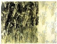 "Iris Hispanica I. Serie ""Palimpsestos"""