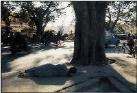 A Homeless Woman – Delhi