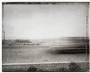 Car passing snake, eastern Mojave Desert, 5/29/83