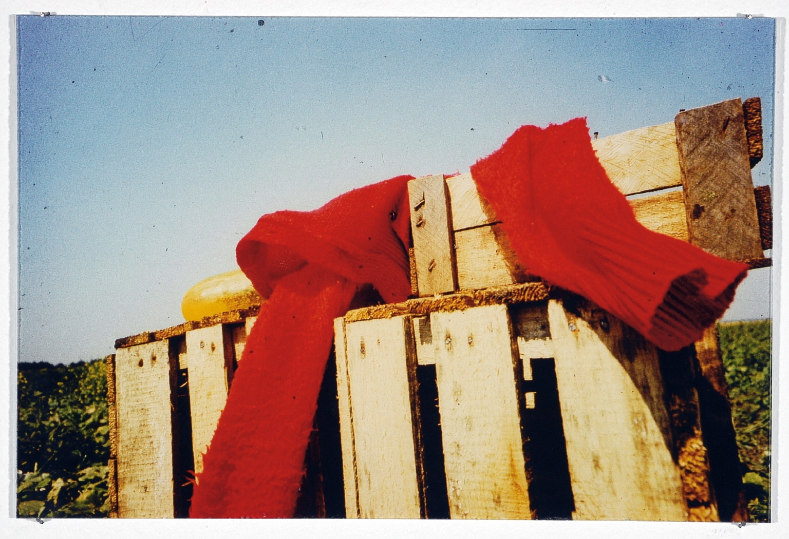 """Fotografía de la instalación """"Red Series"""""""