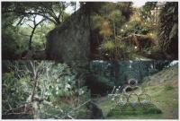 Cuatro parques