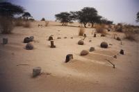 Cementerio IV