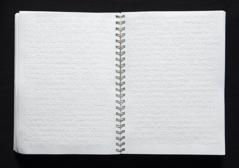 Imagen de las páginas interiores del libro