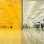 Safe Light, Divided Ballroom