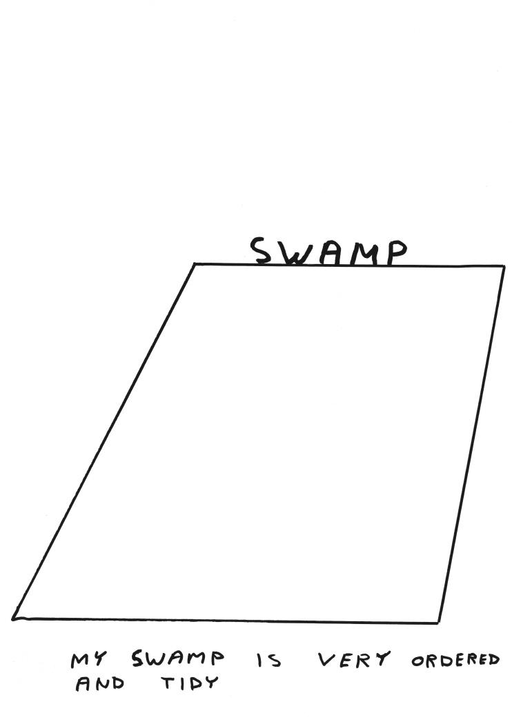 Untitled (Swamp) (2011)