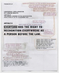 Universal Declaration of Human Rights. A6