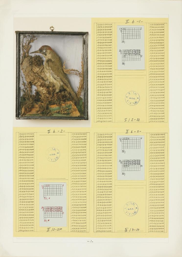 """Imagen de la pieza nº 1 de la obra correspodiente a la serie """"Vogel"""""""