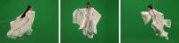 Green Screen Goddess (Ten Thousand Waves Series)
