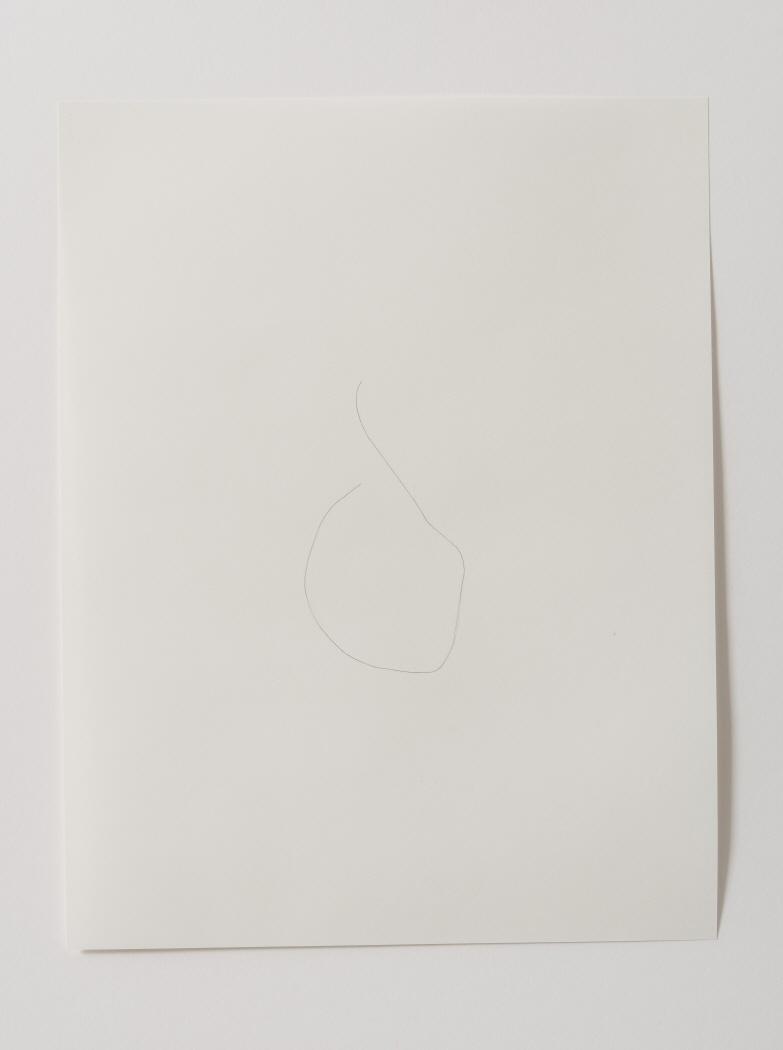 Hair Drawings, 1998